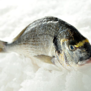 Whole-Bream